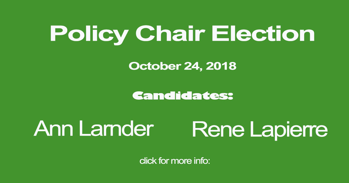 policychair election banner